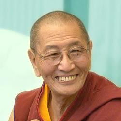Kirti Tsenshab Rinpoche