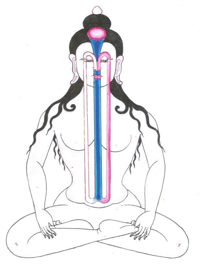 Yoga und Medizin